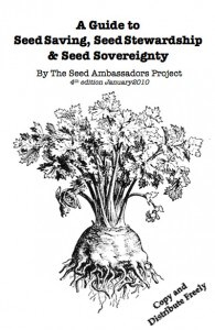 seed-zine-large-cover