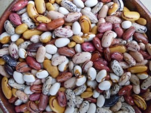 "We sometimes sell a mix of bean varieties as a ""Bean Party."" So pretty!"